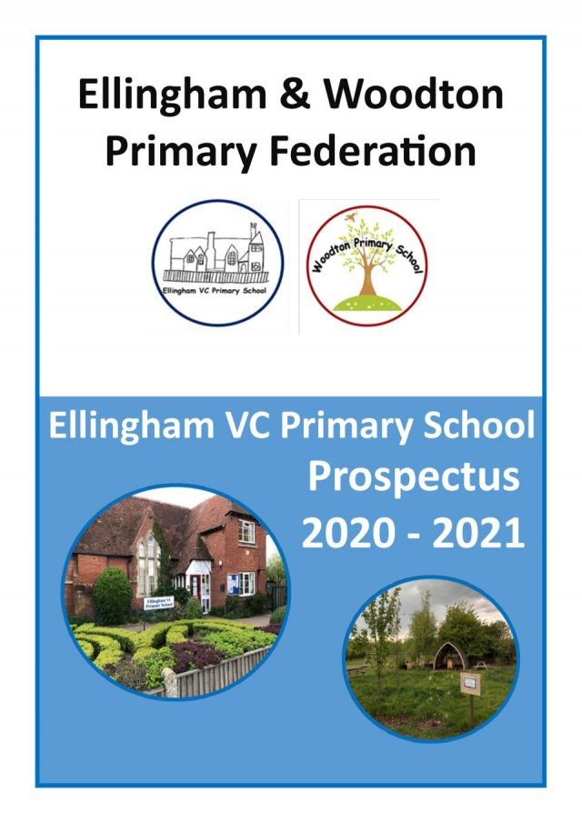 thumbnail of 31 Ellingham Prospectus 2020