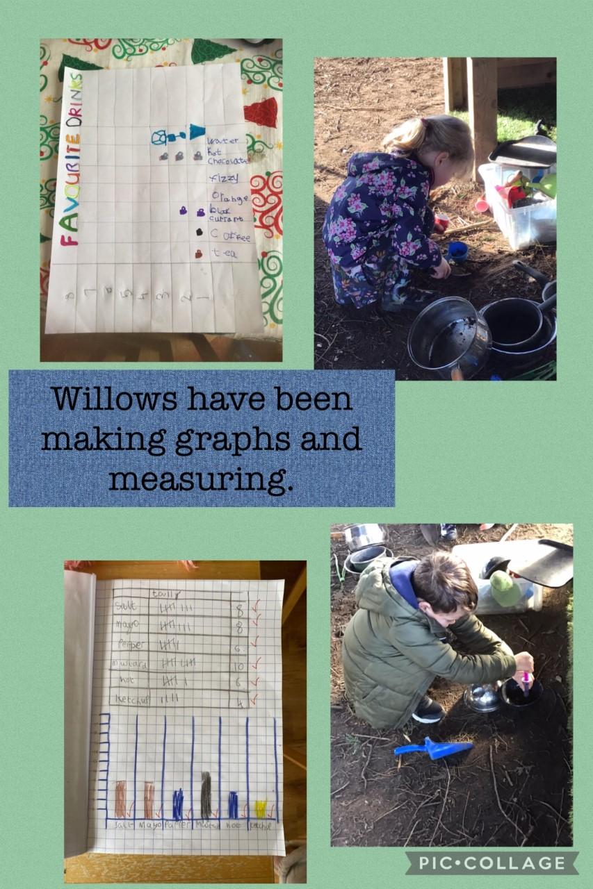 willows Feb 24