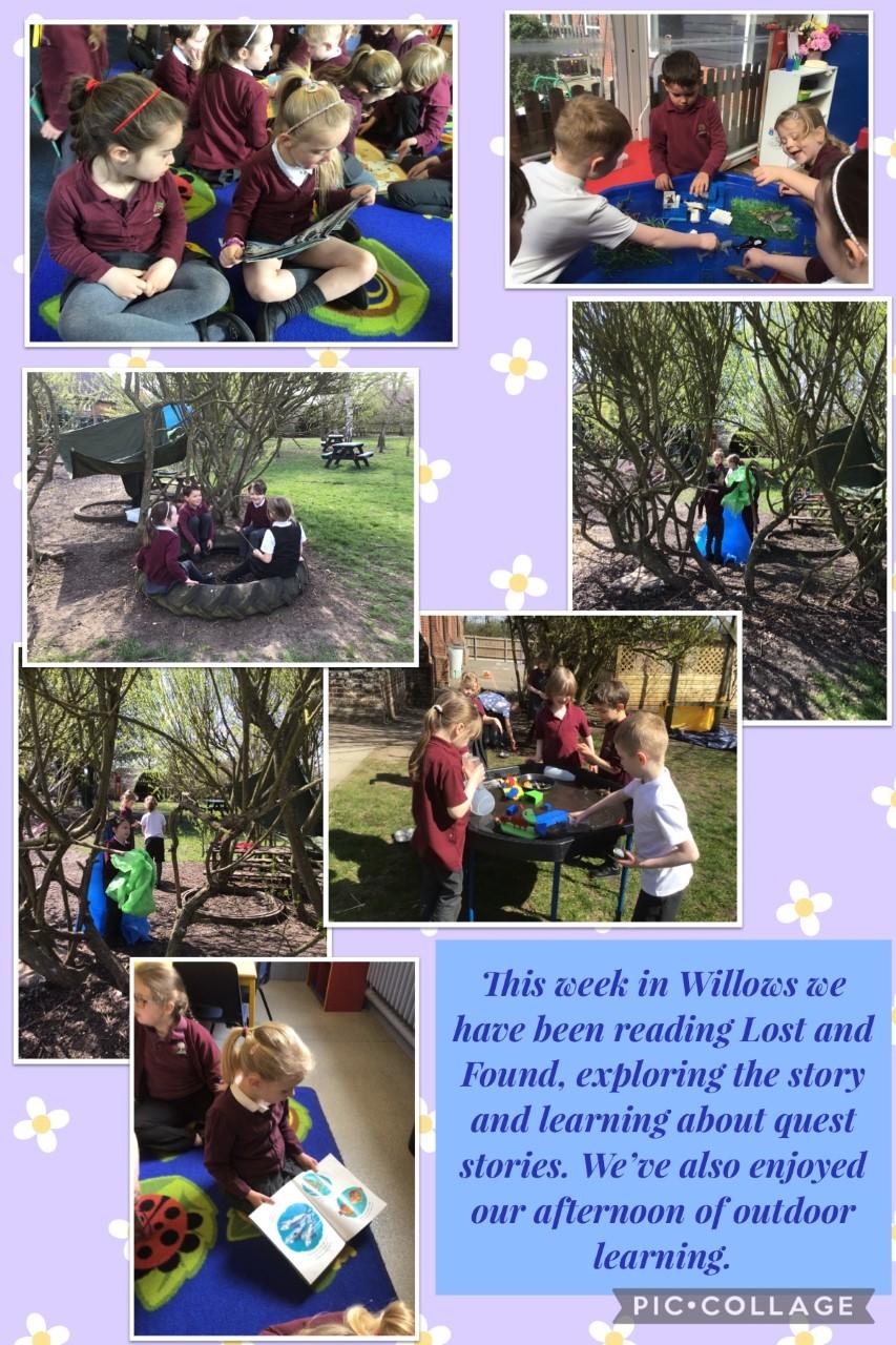 willow photomontage