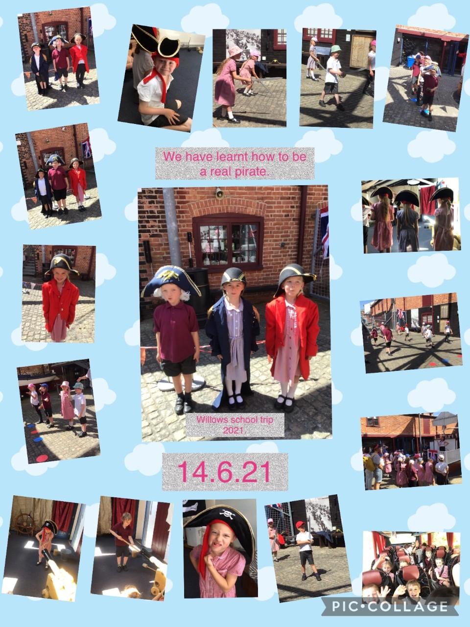 Willows photomontage 18-6